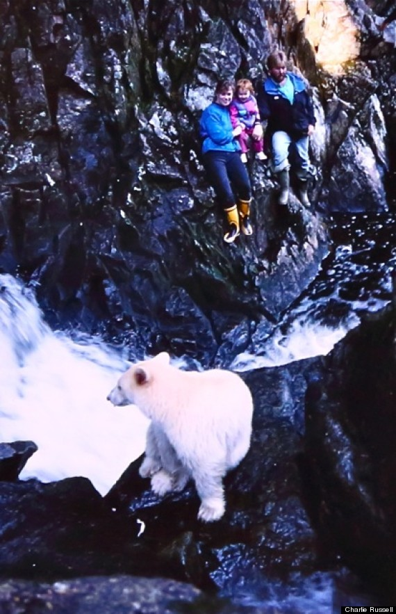 Watching a spirit bear at age two with my parents Jeff and Sue Turner on Princess Royal Island. (Photo: Charlie Russell)