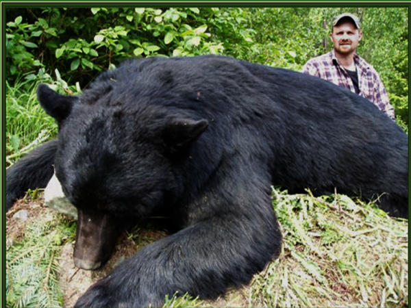 Abe Dougan, hunting guide with Big Boar Outfitters, and a dead black bear. Image sourced from Bigboaroutfitters.com